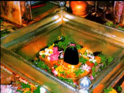 Varanasi Vishwanatha in the iconic image of shivalingam