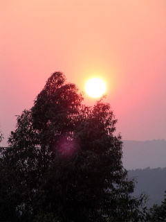 Delightful dawn!
