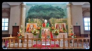 Sri Ramakrishna altar from a distance